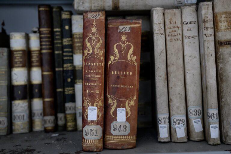 museo-campano-capua-biblioteca-gallery-09